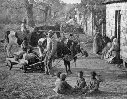 slaves plantation